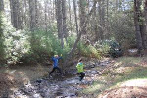 Runners crossing Beaver Creek Watoga Mountain Trail Challenge Races