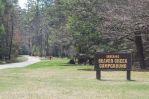Sign Entrance to Beaver Creek Campground Watoga State Park