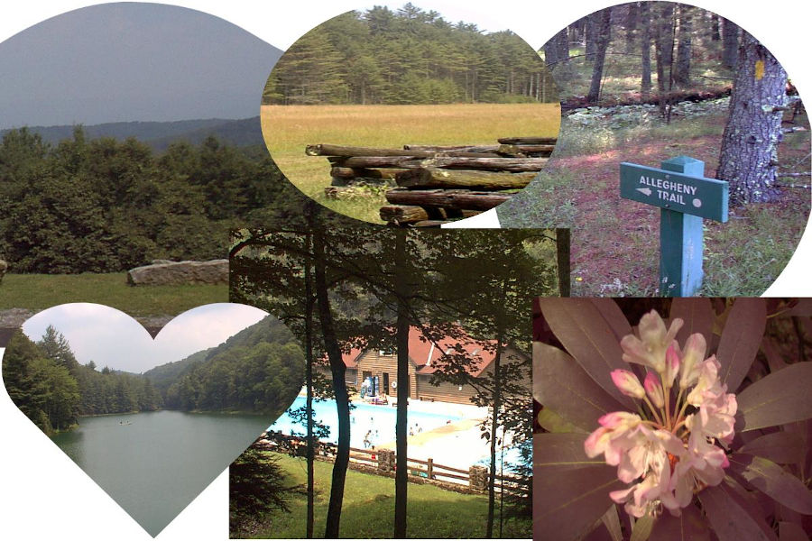 """A few of the roads Various points of interest at Watoga State Park, including a path """"less traveled."""" Photos include views of TM Cheek Memorial, the airstrip near the Beaver Creek Campground, the wooded Allegheny Trail, Watoga Lake, the swimming pool and a rhodendrom bloom. Photo collage by John C. Dean."""