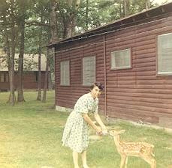 My mother taught us how to feed Freckles from a baby bottle while growing up at Watoga. Circa 1967. Photographer unknown.