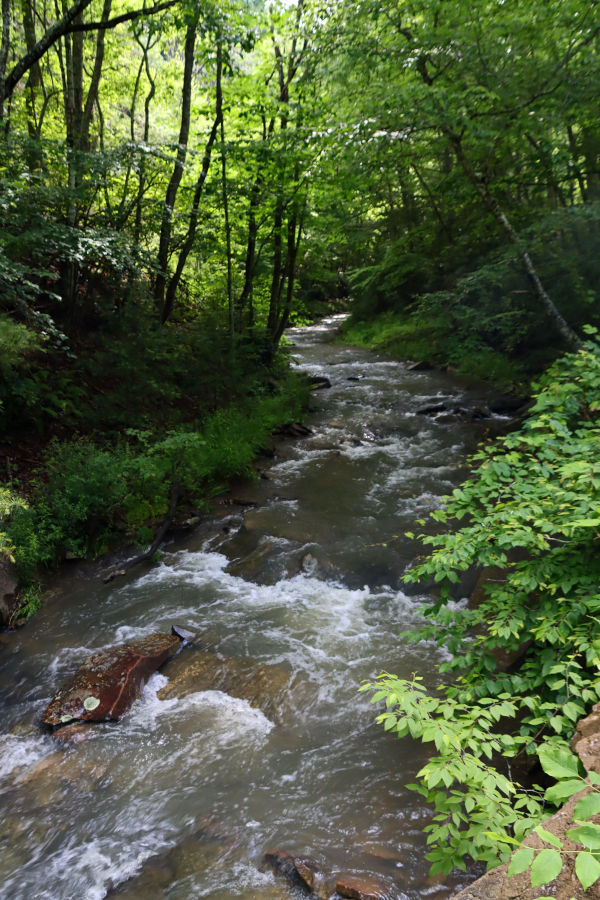 Ah, the sights and sounds of Watoga State Park as presented from a photographer's lens.