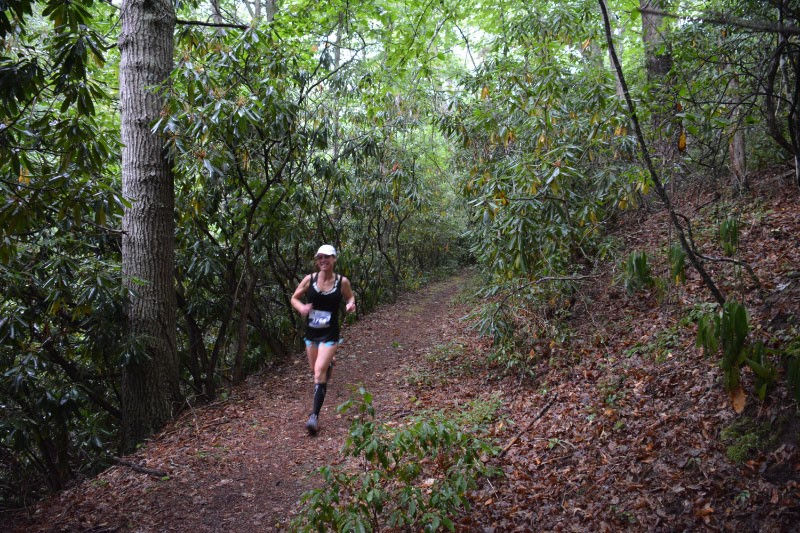 Mountain Trail Challenge Runners go by lush ferns along the course.